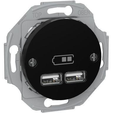 Schneider Renova WDE011761 Laddstation 2 USB, svart