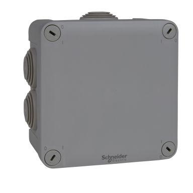 Schneider Electric ENN05005 Kytkentärasia harmaa, ruuvikansi