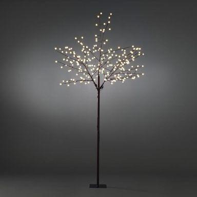 Konstsmide 3385-600 Dekorationsbeslysning brun, 250 cm, 240 st LED