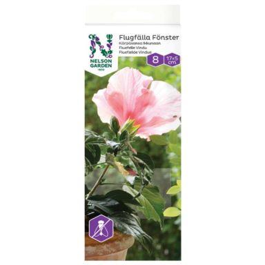 Nelson Garden 8650 Kärpäsansa ikkunaan, 8 kpl/pakkaus