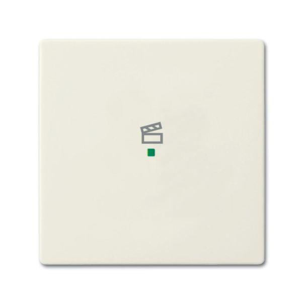 Yksiosainen vipupainike ABB Future Linear 6220-0-0587 tilanneohjaus Chalet-white