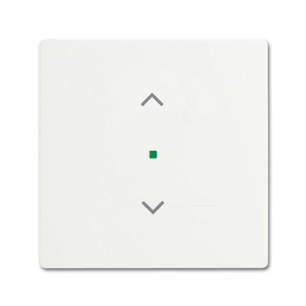 Yksiosainen vipupainike ABB Future Linear 6220-0-0603 verhoille valkoinen