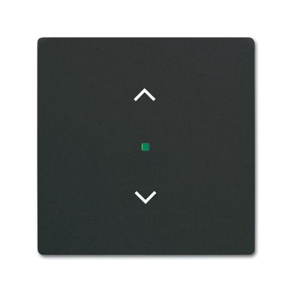 Yksiosainen vipupainike ABB Future Linear 6220-0-0620 verhoille Musta
