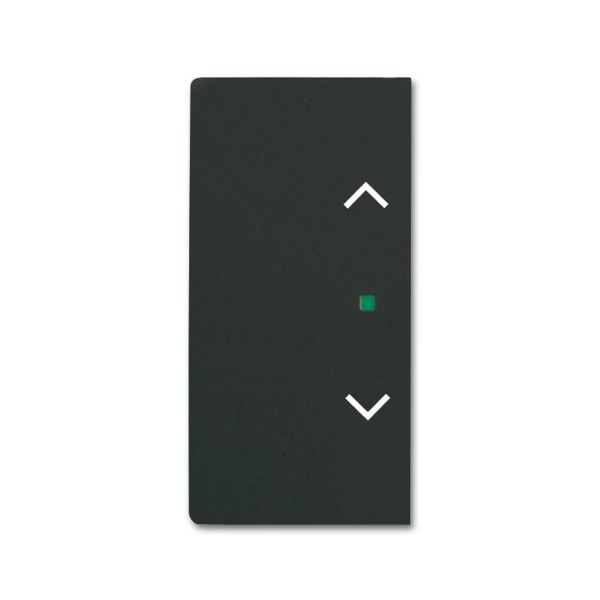 Yksiosainen vipupainike ABB Future Linear 6220-0-0625 verhot, oikea/vasen Musta